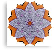 Coral Pincushion Metal Print