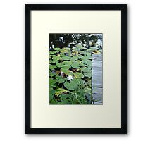 Dockside Framed Print