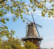 Dutch Windmill in Holland Michigan by Craig Sterken