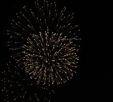 4th Of July FireWorks 2 by OldLazyDog