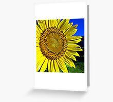 A Sunny Volunteer .... Greeting Card