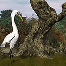 Great White Egret by Walter Colvin