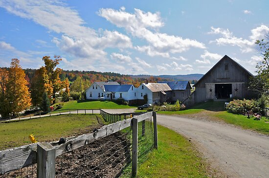 New England Horse Farm - Grantham, New Hampshire by campbellart