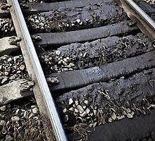 Regurgitated Rails by MagnusAgren