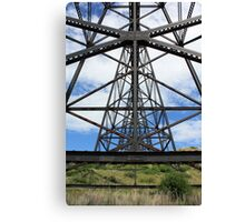 A Different Point of View Canvas Print