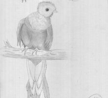 Quetzal by MichaelT