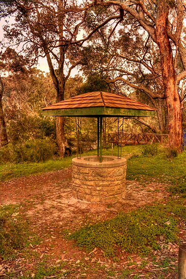 The Wishing Well, Bridgetown, WA by Elaine Teague