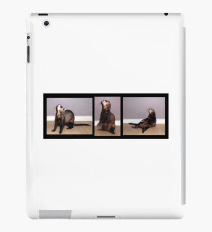 Funny Ferret iPad Case/Skin