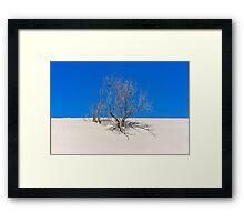 Sand & Sky Framed Print