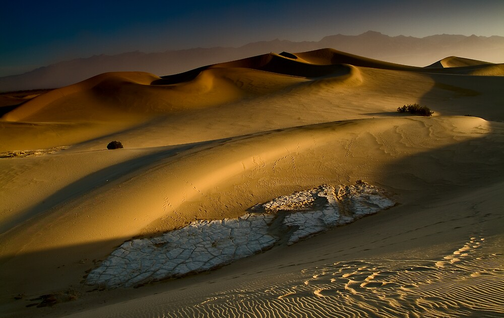 Dawn on the Stovepipe Wells Dunes by Zane Paxton