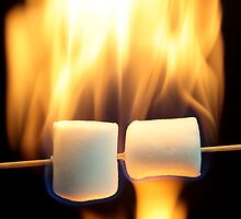 Marshmallow on a wood stick in fire. by Zosimus