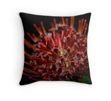 What Am I.... The Result :) Throw Pillow