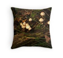 Meeting of wood nymphs incognito Throw Pillow