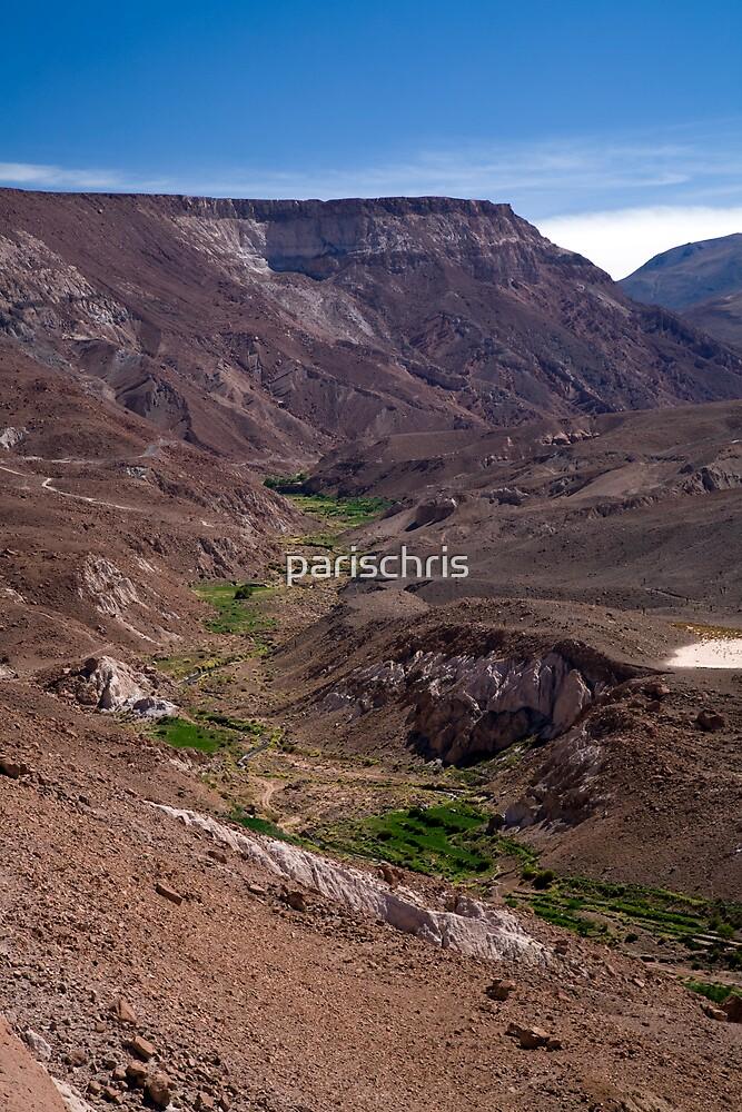Rio Grande de Atacama by parischris