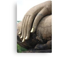 The Hand That Blesses Canvas Print