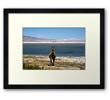 The view at 4500m  - Atacama Desert Framed Print