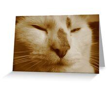 King Kat Greeting Card