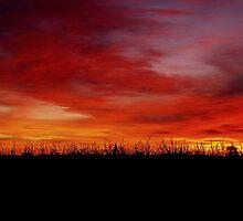 September Sunrise by MichiganGirl