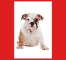 bulldog Puppy One Piece - Short Sleeve