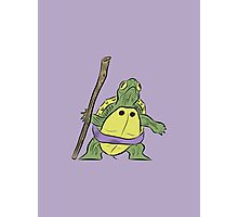Hatchling Ordinary Ninja Turtles - Don Photographic Print