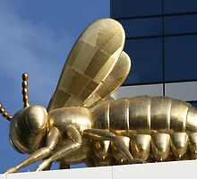 Golden Bee by Graham Schofield