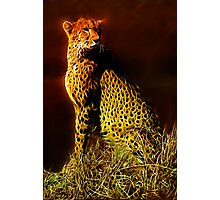 Standing Guard Photographic Print