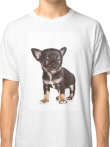 BROWN Chihuahua puppy Classic T-Shirt