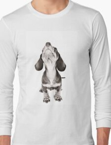 Funny dachshund with a big nose Long Sleeve T-Shirt