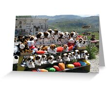Plush puppies for sale Greeting Card