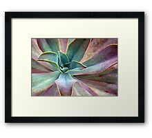 Organic Beauty Framed Print