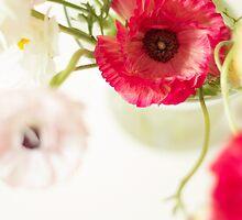 Ranunculus by Sybille Sterk
