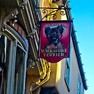 The Yorkshire Terrier  (Pub Sign) by Trevor Kersley