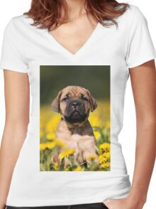 Cute Puppy mastiff Women's Fitted V-Neck T-Shirt