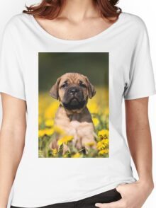 Cute Puppy mastiff Women's Relaxed Fit T-Shirt
