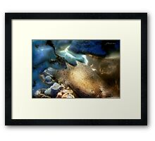 Sea-Through Framed Print
