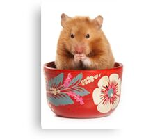 Funny red-haired hamster Canvas Print