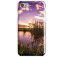 Acres of Sky iPhone Case/Skin