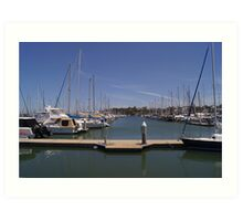 Manly harbour yacht club Art Print