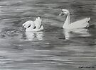 Tranquility - White Geese by Heather Ward