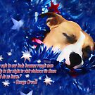 Craddled by a Blanket of Stars and Stripes - Quote by Shelley Neff