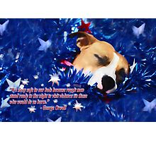 Cradled by a Blanket of Stars and Stripes - Quote Photographic Print