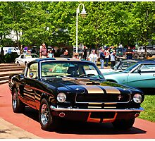 1966 Shelby Mustang GT350H  Photographic Print