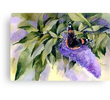 Buddleia with Red Admiral Butterfly Canvas Print