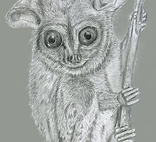 Tarsier by MayWebb