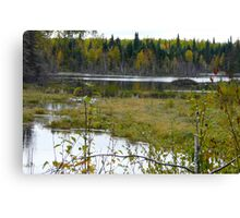 Beaver House and Dam Canvas Print