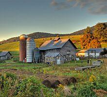 Portrait of a Mountain Farm  by Jane Best