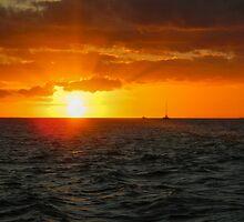 Hawaiian Sunset by Liz McBride