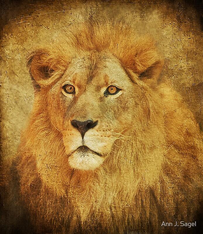 Textured King by Ann J. Sagel