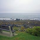 Bench at the Coast 2 by AntonLee