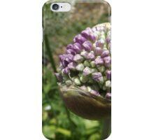 Flower Close-Up, Queens Botanical Garden, Flushing, New York iPhone Case/Skin